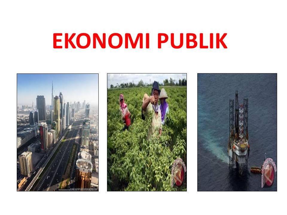 Ekonomi Publik (STIE Sakti Alam Kerinci)