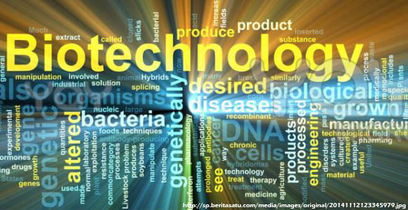 BioTeknologi Topik Struktur DNA